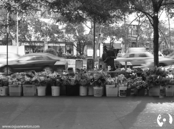 Foto Friday - 08.03.2012